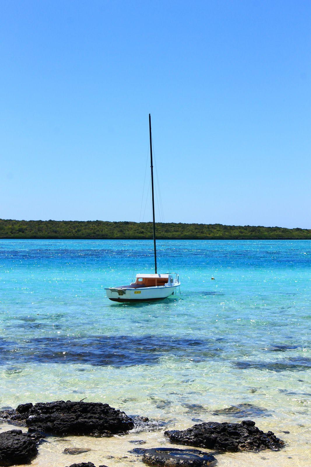 Une embarcation face à l'île aux aigrettes