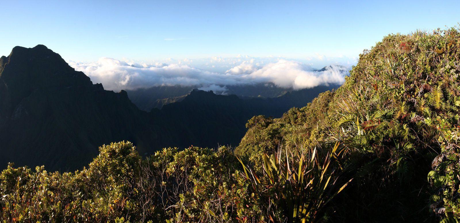Vue sur la vallée de la Papenoo au loin