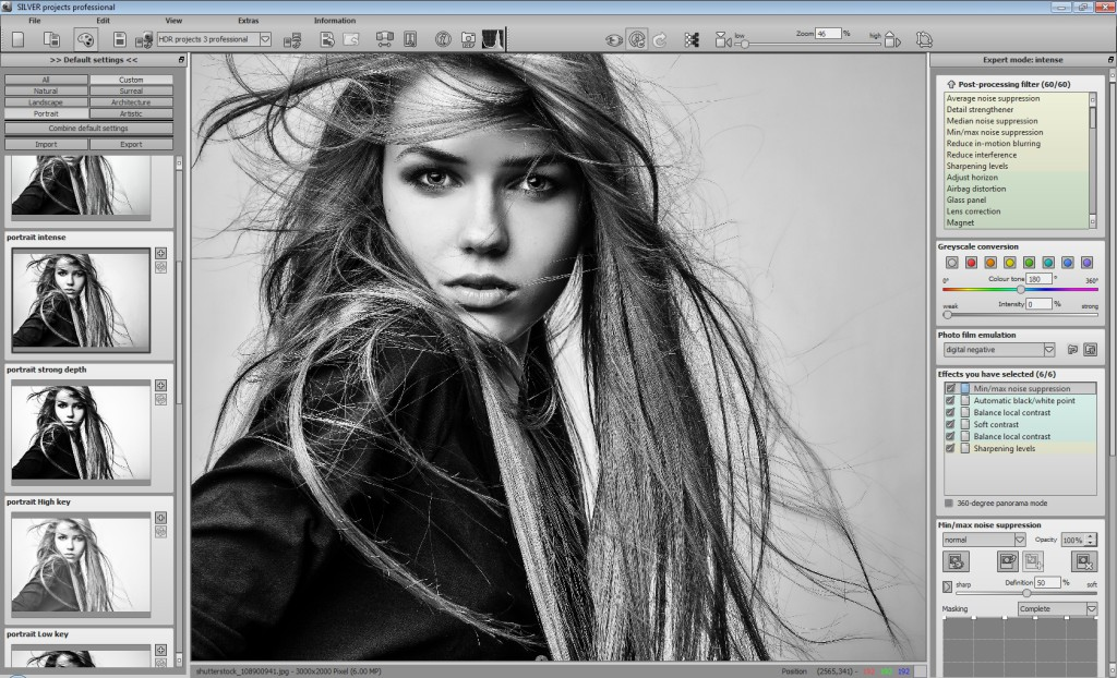 Get Silver projects professional to Transform Color Images into Stunning Black &amp&#x3B; White