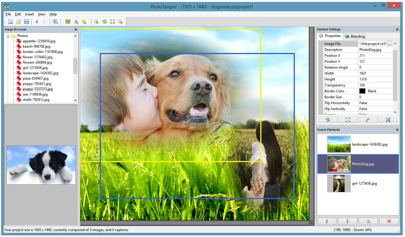 Get PhotoTangler Collage Maker to Create Amazing Photo Collages