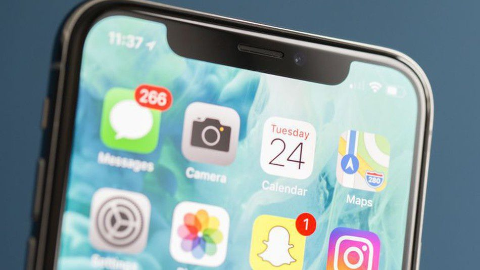 iPhone X owners: Please, please, please don't be idiots, and do this