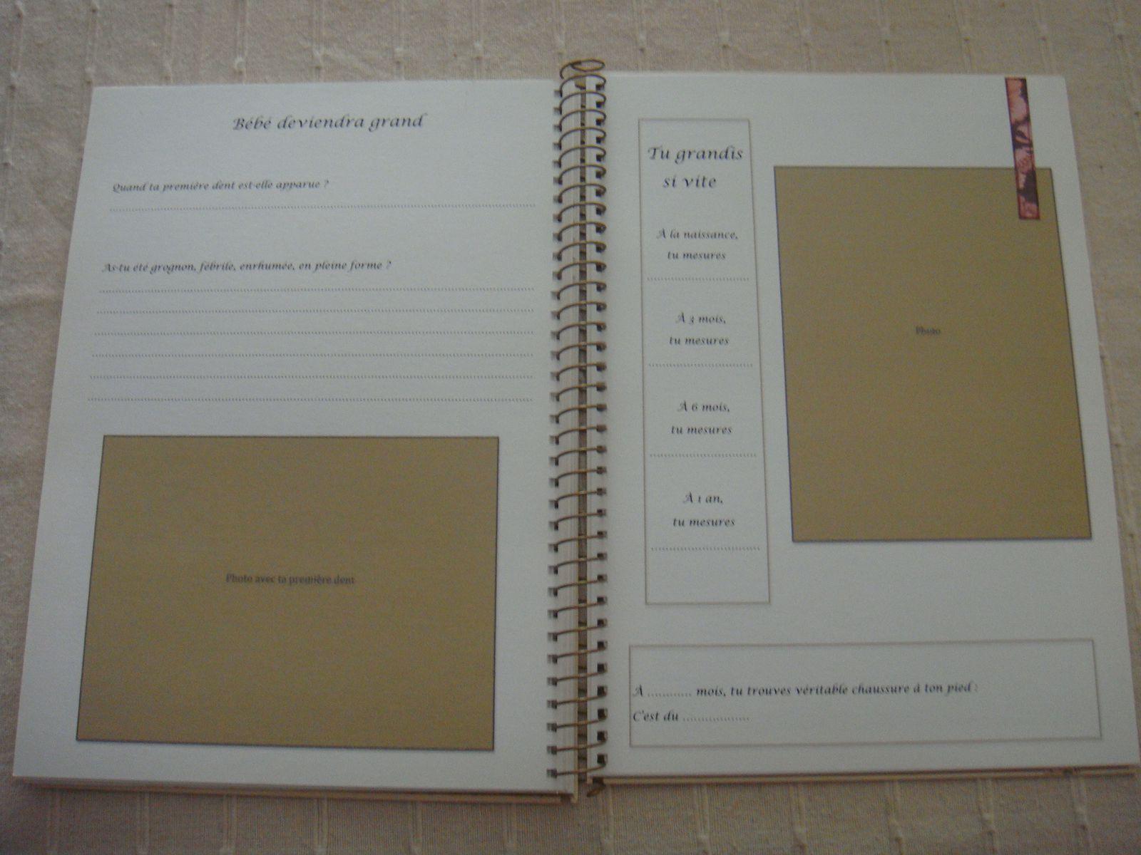 album de naissance fille audrey et ses papiers. Black Bedroom Furniture Sets. Home Design Ideas