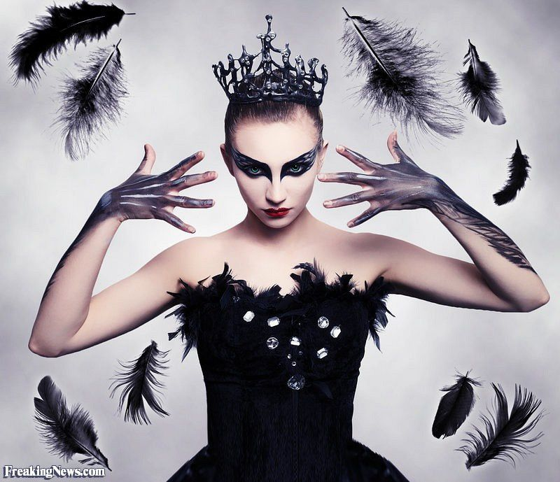 Black Swan , Ouz\u0027 Créations