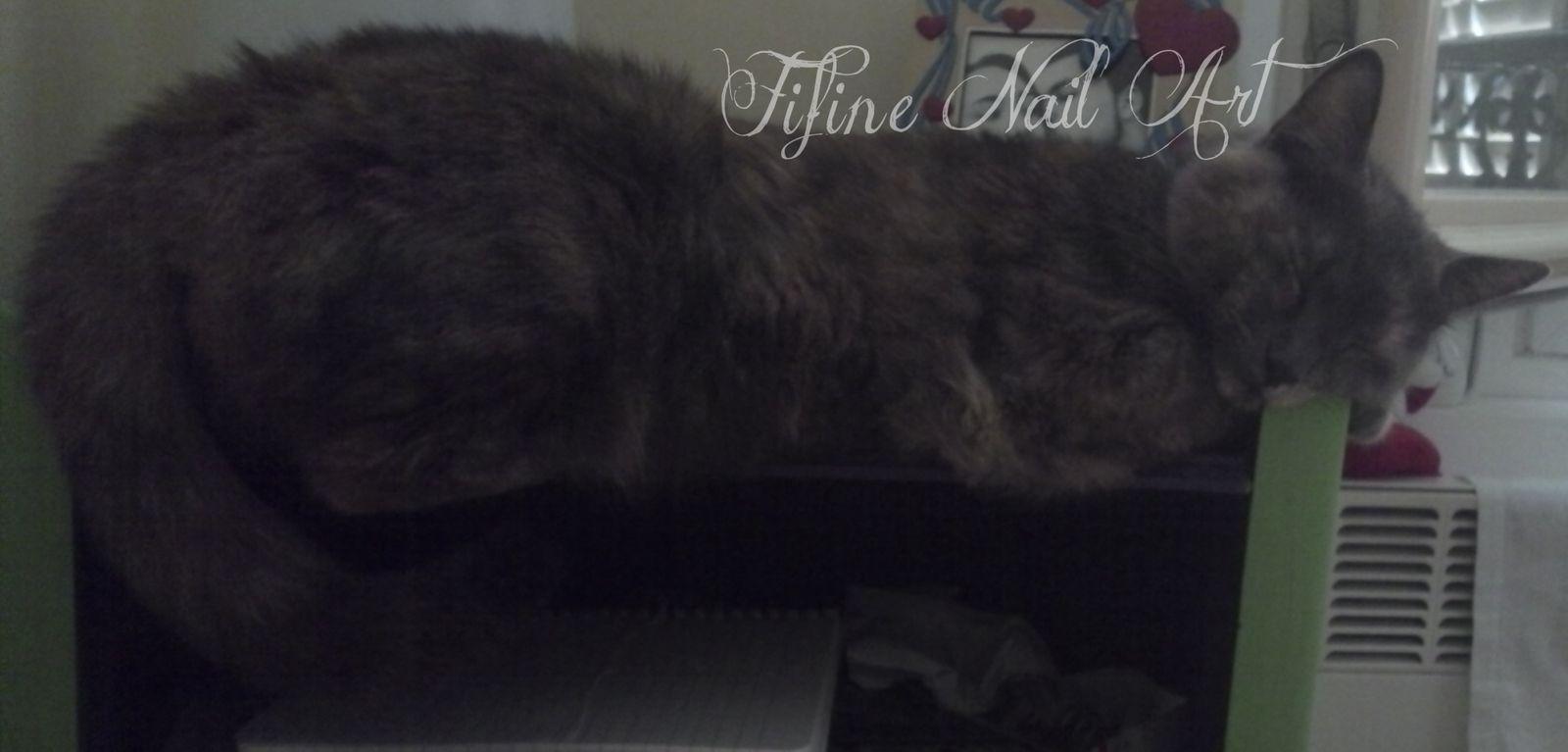 Je préfère faire la sieste sur ta table de chevet