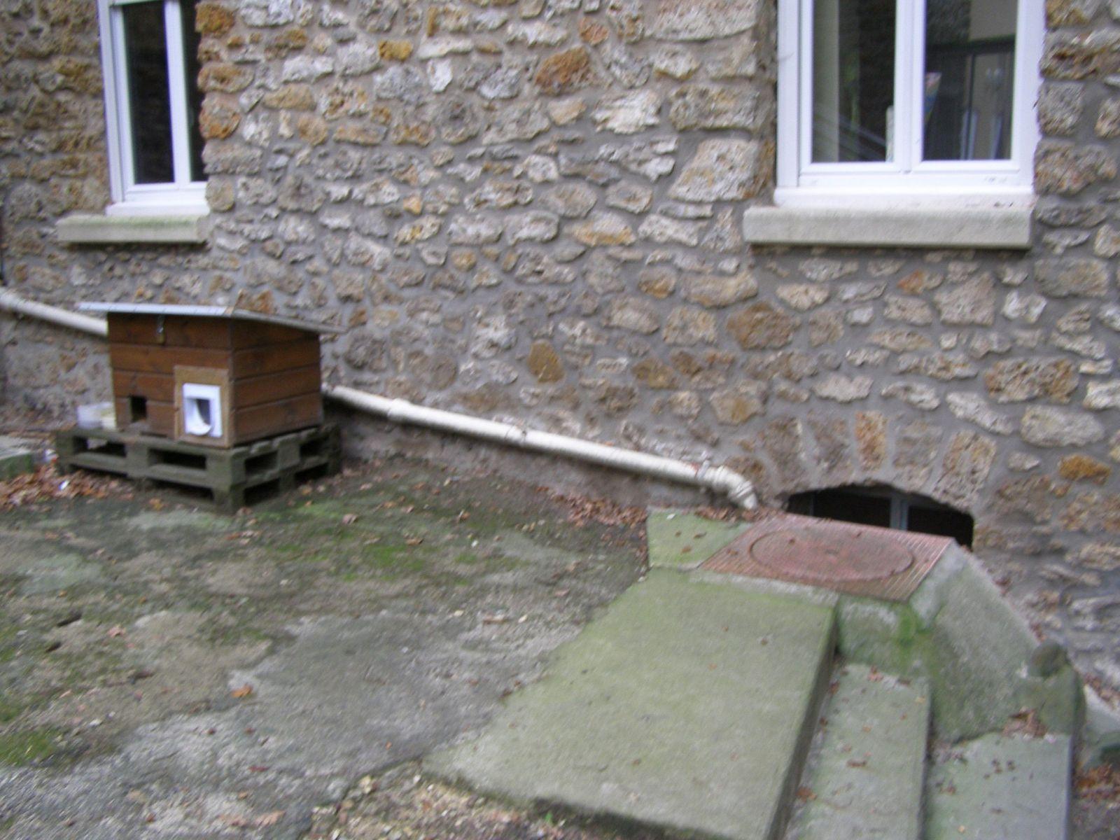Cette niche/cantine, placée à proximité d'un soupirail de la chaufferie était le point de nourrissage de quelques chats,  Muscade était la plus fidèle.