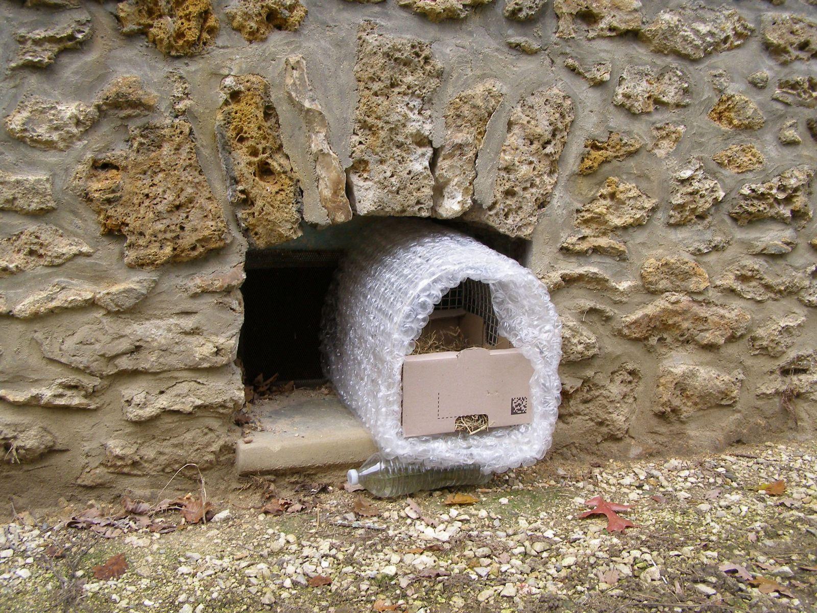 et voilà une petite chambre avec vue, bien chauffée. Le soupirail voisin produit aussi de la chaleur. Elle pourra s'y réfugier si cet abri insolite lui fait peur.
