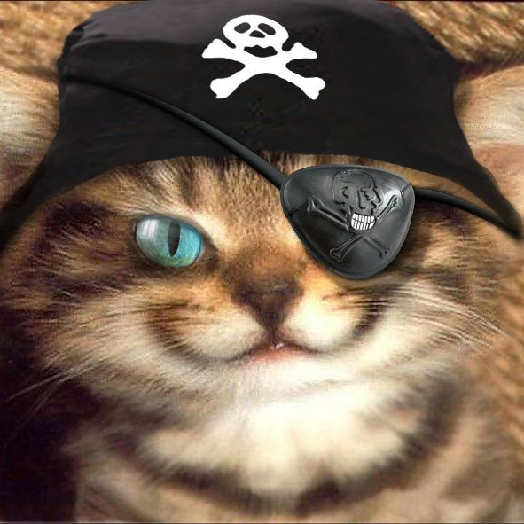 Désormais il s'appelle Pirate !