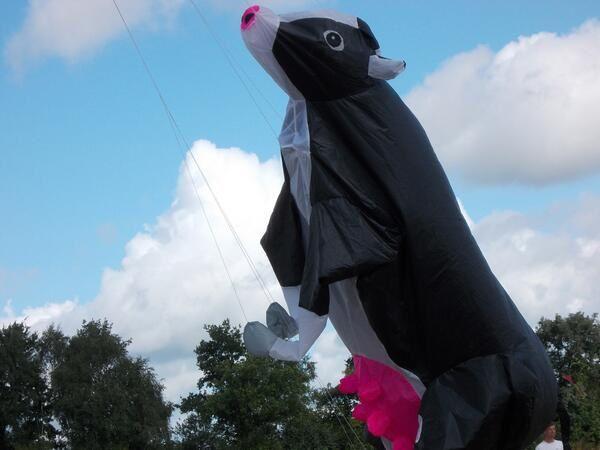 Opération réoccupation du ciel à #NDDL - Cerf-volants : vache volante à Notre Dame des Landes