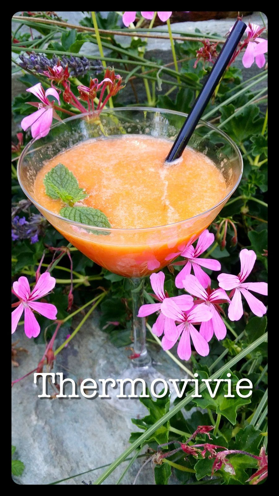 Cocktail / Smoothie abricots agrumes et sa pointe de saké au thermomix