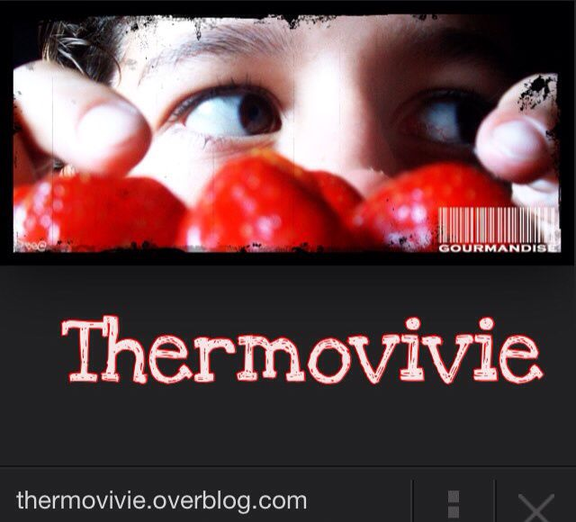 https://twitter.com/thermovivie