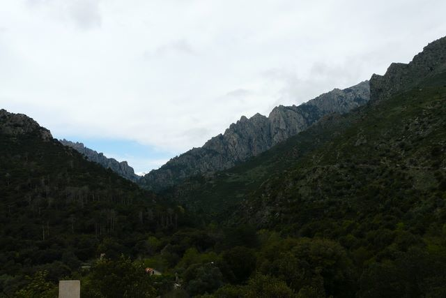 [HERP REPORT] - Provence et Corse (avril 2012)