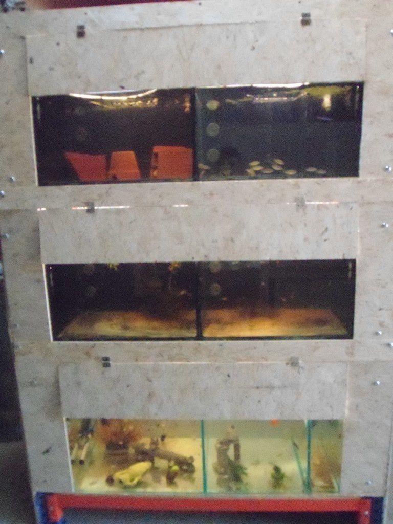 Construction d'une batterie pour prendre beaucoup moins de place et aussi pour isoler les aquariums ! construction en détail ici :