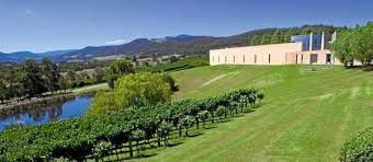 viticulture in australia Sensor-driven viticulture tools are giving growers the ability to monitor and  measure their vines like never before, writes emily parkinson.