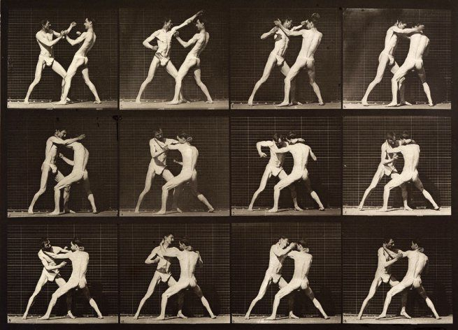 """Boxing open-hand""Eadweard Muybridge 1887"