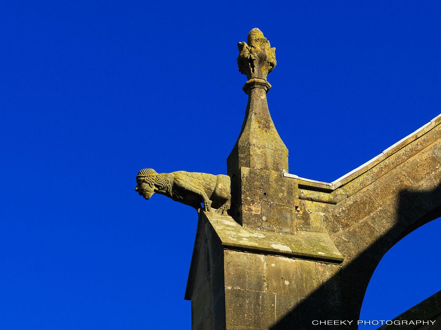 Gargouille à la cathédrale de Mirepoix
