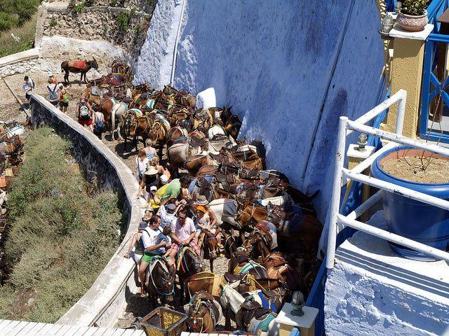 Les photos du chemin des ânes viennent d'internet, nous avions peur que l'appareil photo fondent à cause de l'odeur!