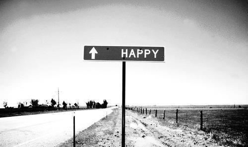 La route à suivre .......