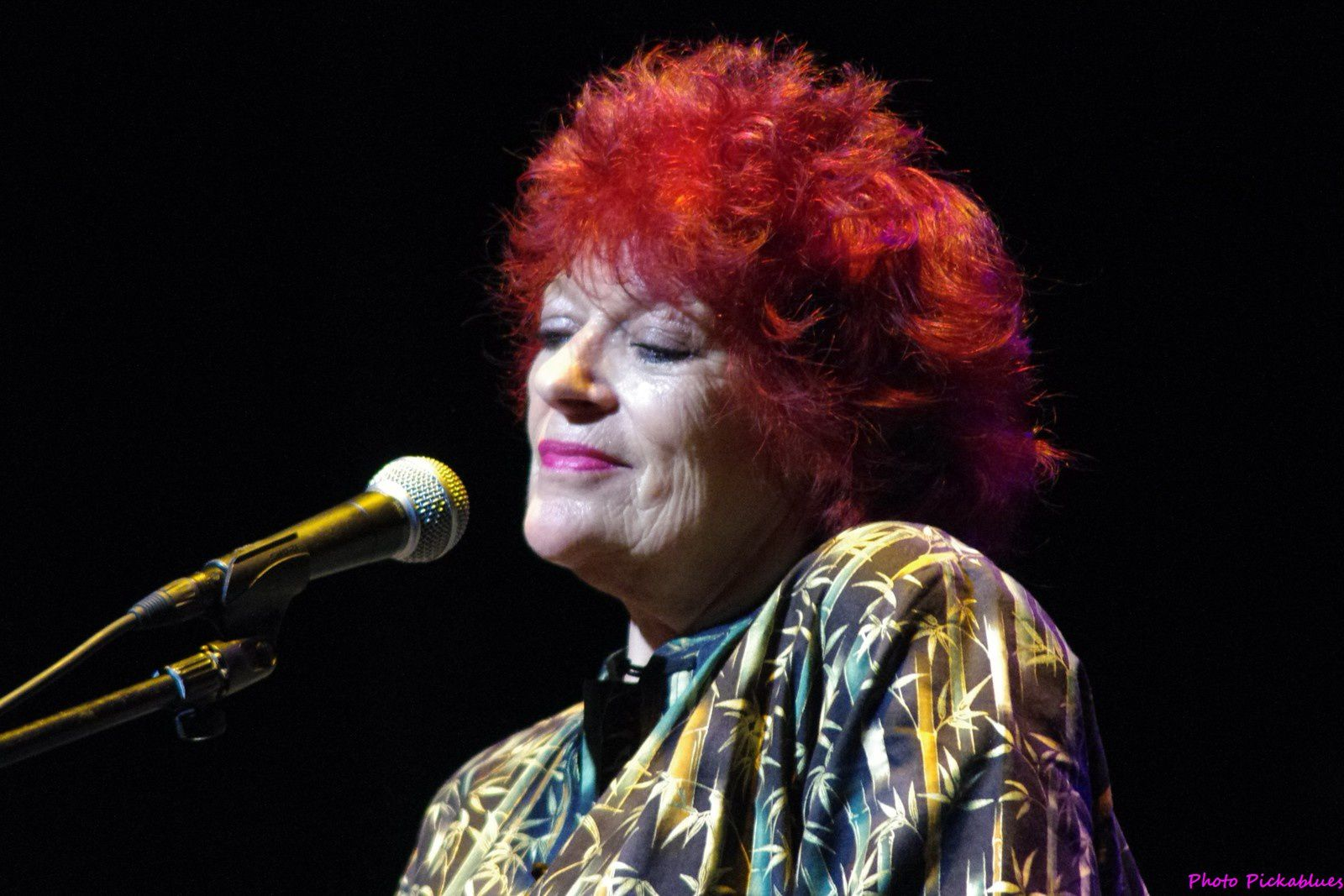 Dana Gillespie - 14 février 2015 - Seven Nights to Blues, Saint André lez Lille (59)