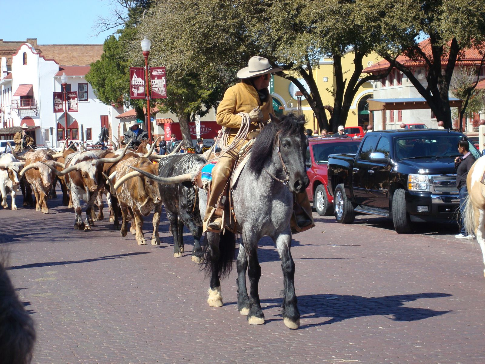Texas : San Antonio &amp&#x3B; Fort Worth