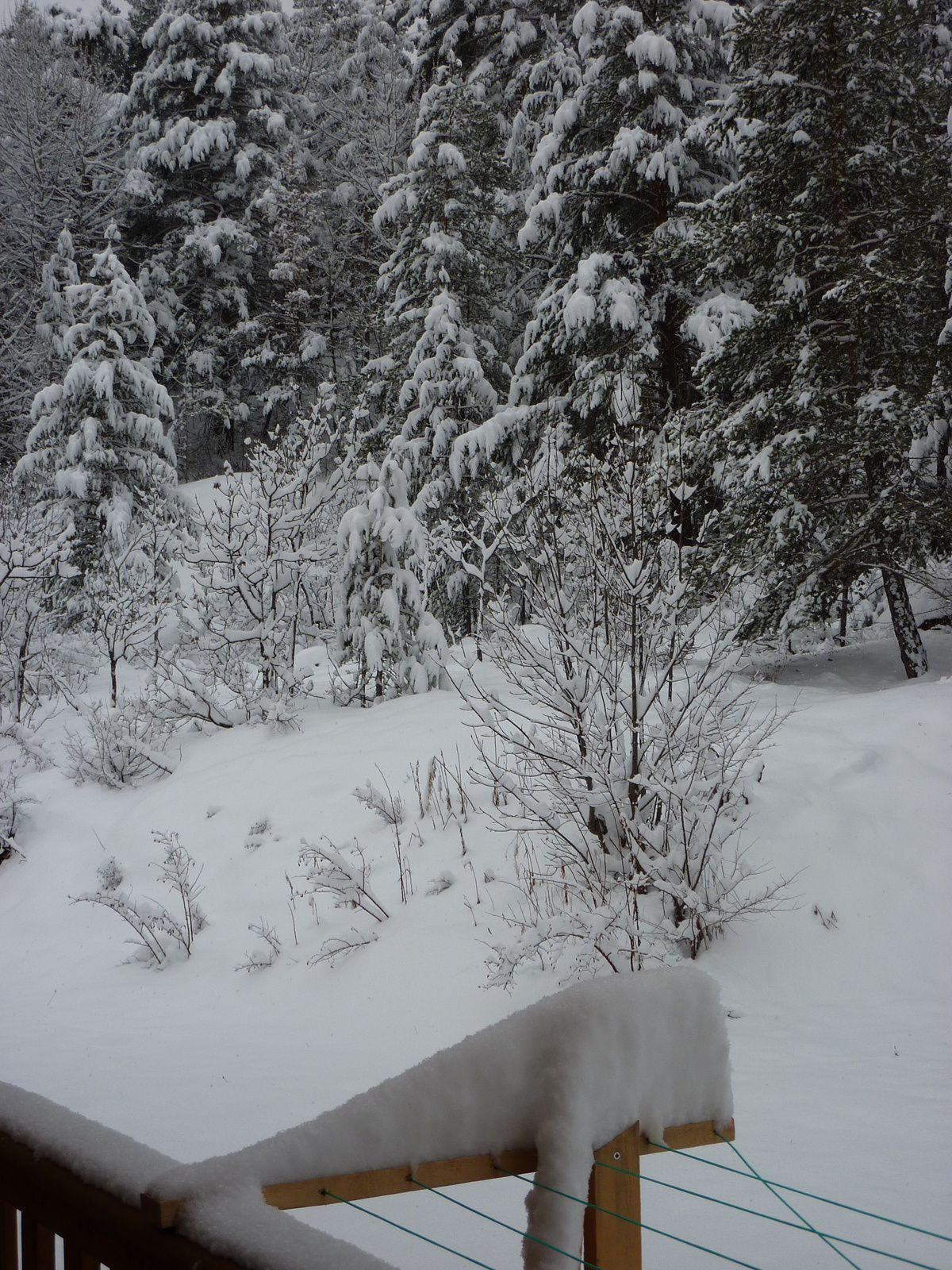 Il neige !!