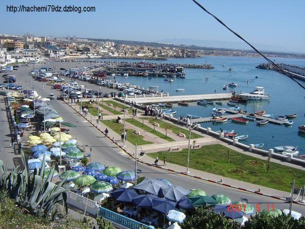 Port-de-la-madrague-Algerie