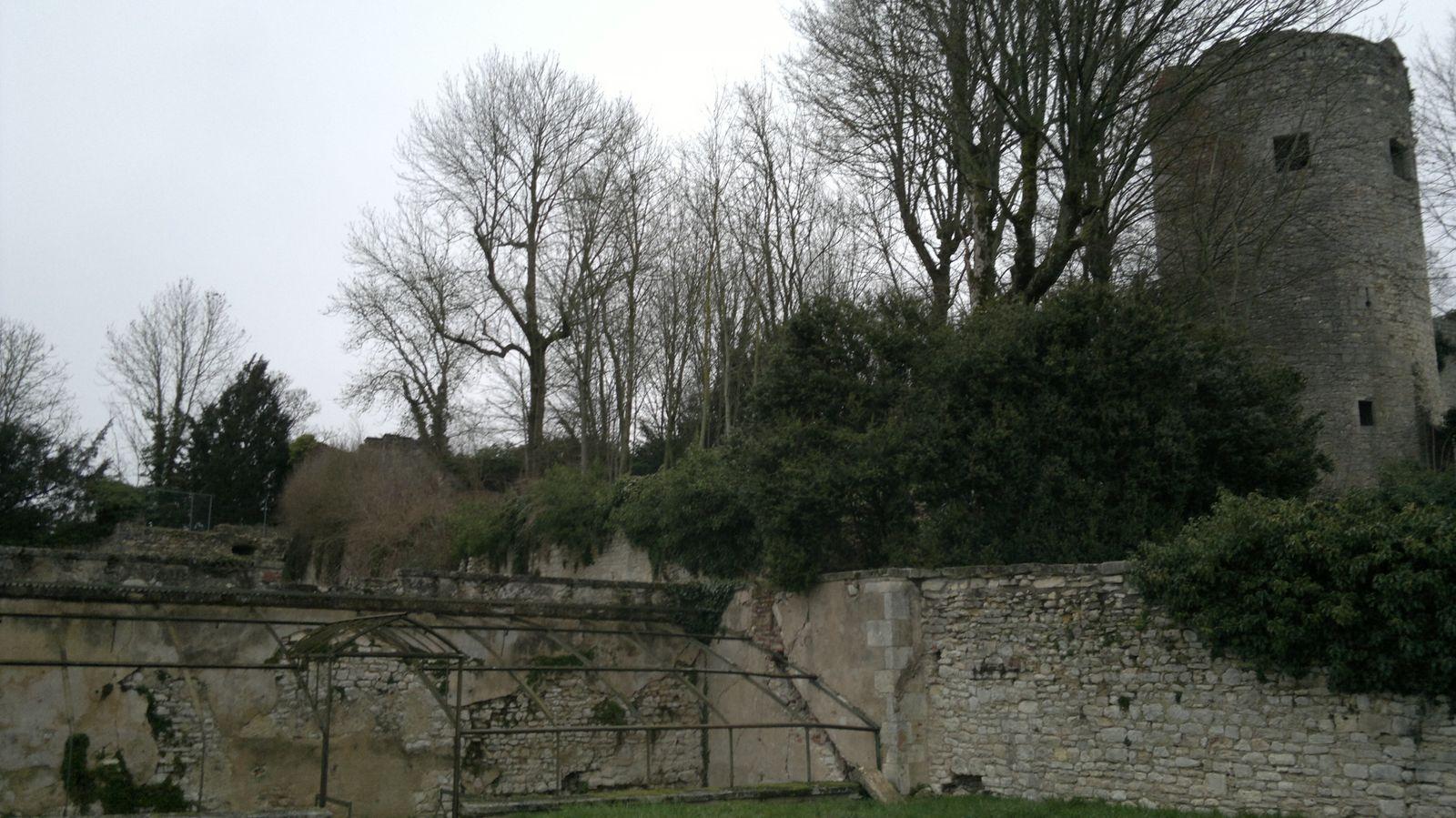Jardin partagé à la Charité-sur-Loire