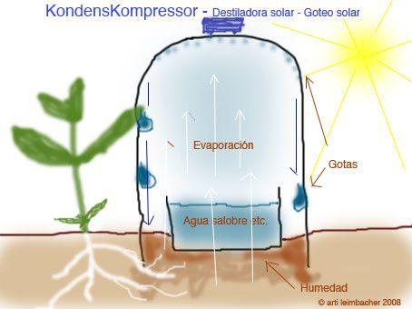 J'ai testé le système d'irrigation solaire &quot&#x3B;Kondenskompressor&quot&#x3B; à base de bouteilles en plastique recyclées