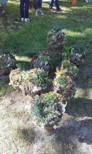 Fête des plantes à Cugny !