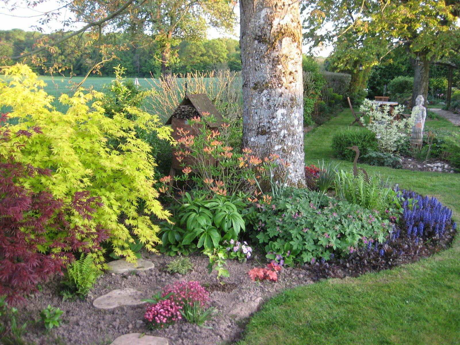 Faisons le point le jardin de la vanneuse for Derriere les murs de mon jardin