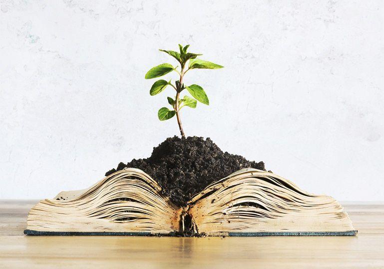 Des livres, des jardins, des envies...