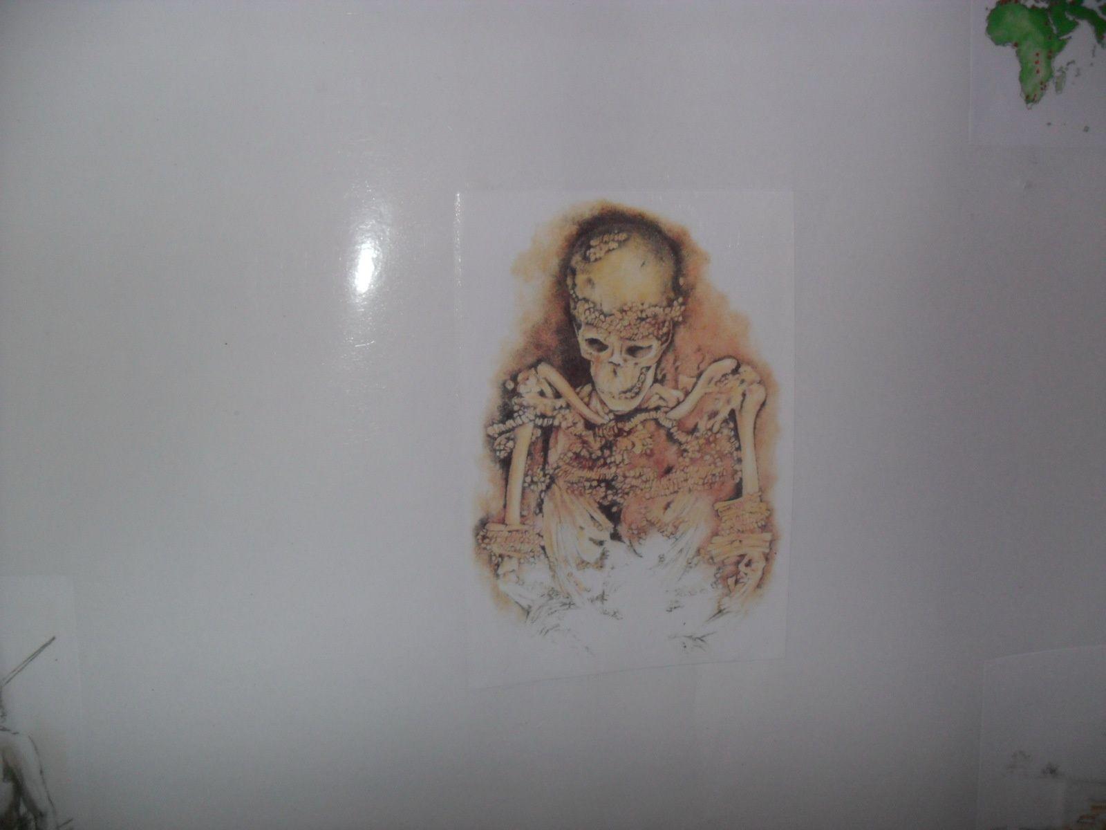 Les hommes donnaient des sépultures à leurs morts. Un squelette recouvert de pierres précieuses a été découvert.