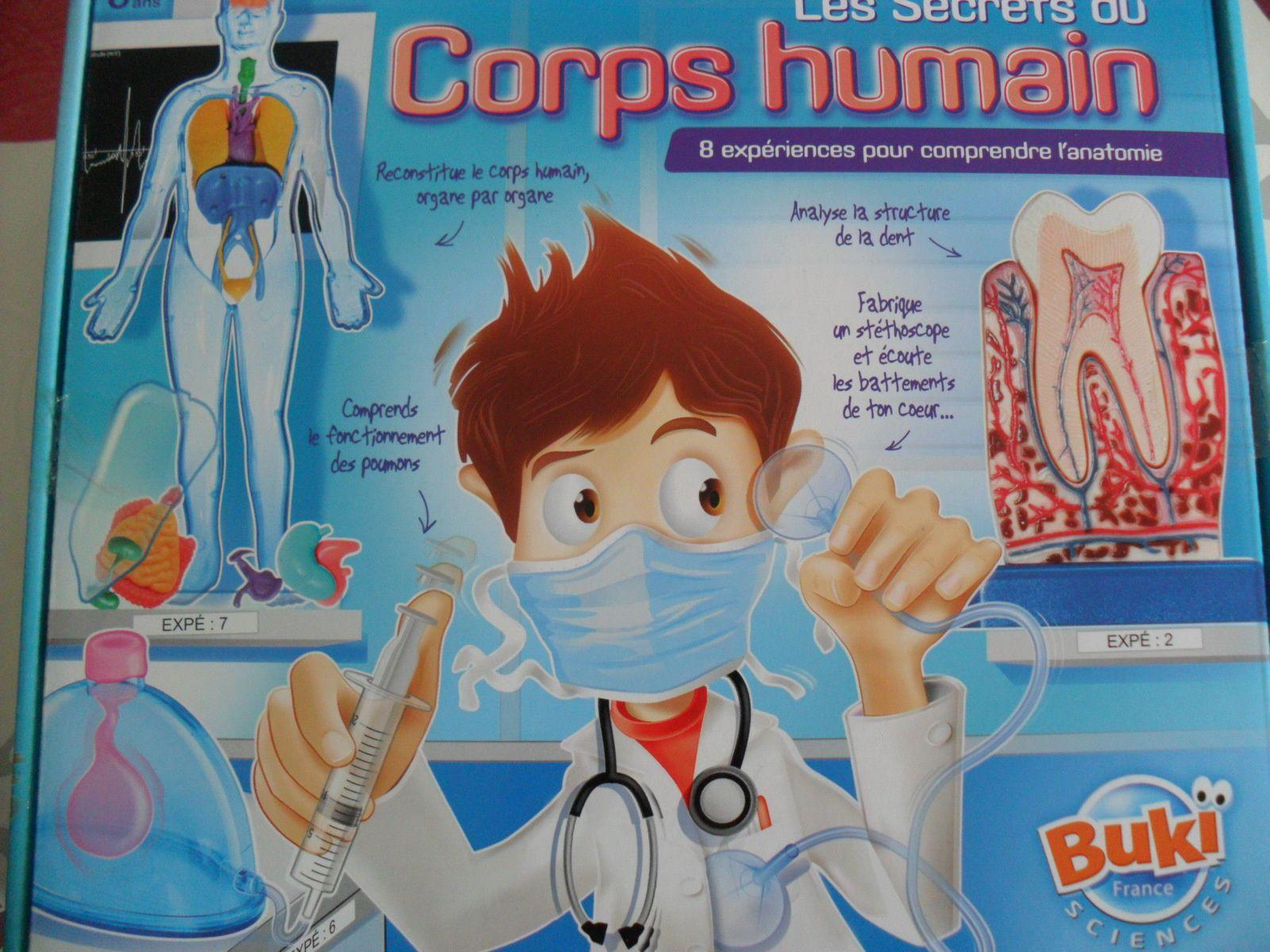 Le corps humain (2e partie)