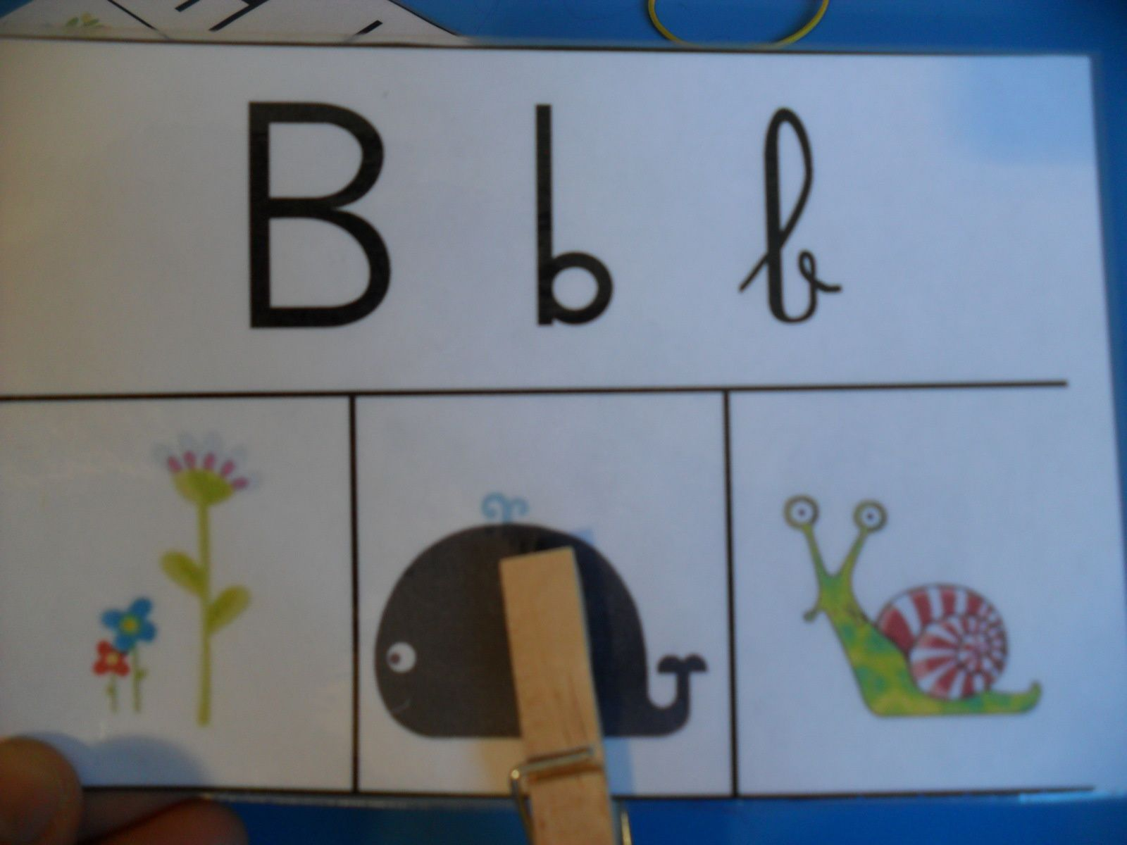 Les spelling cards