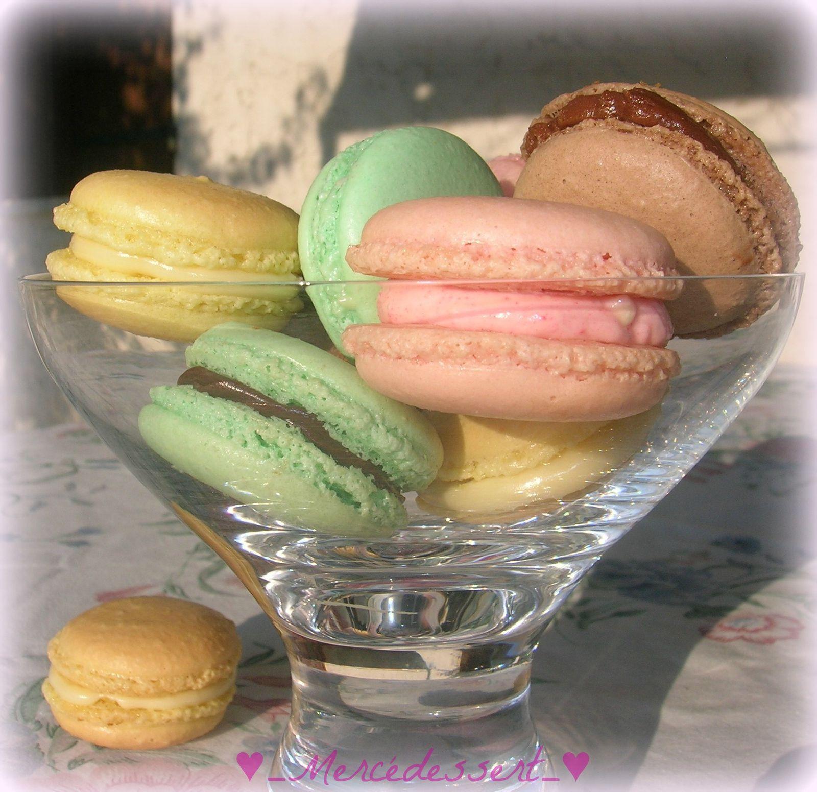 Macarons menthe chocolat, citron, speculoos et fraise tagada