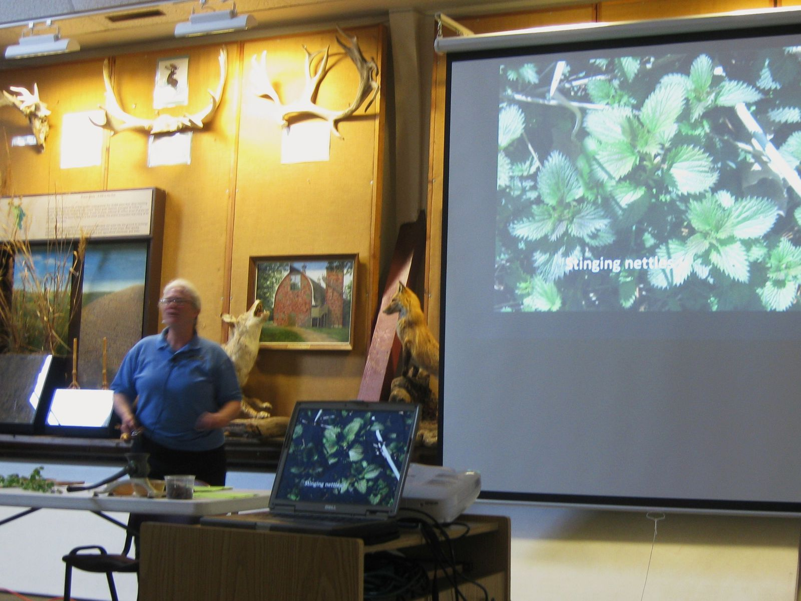 Indian Creek Nature Center staff members Jan Aiels & Christine Kirpes gave an intriguing presentation on wild edible plants.  They explained the basics of foraging, the plants' uses, and preparation.  The above photo shows Jan explaining that stinging nettles are edible.