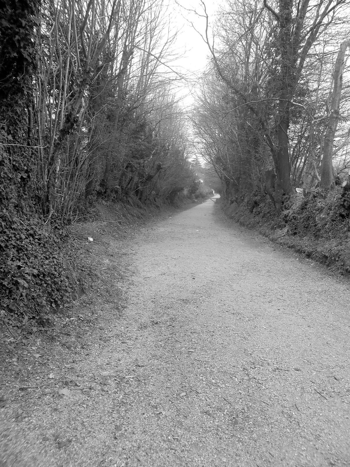 Chemin de traverse.