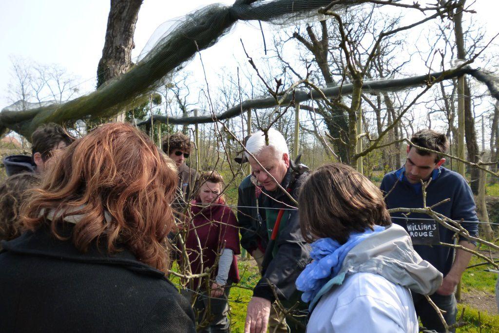 Le groupe de formés avec Michel Briot lors d'une séance de TP sur la taille de pommiers