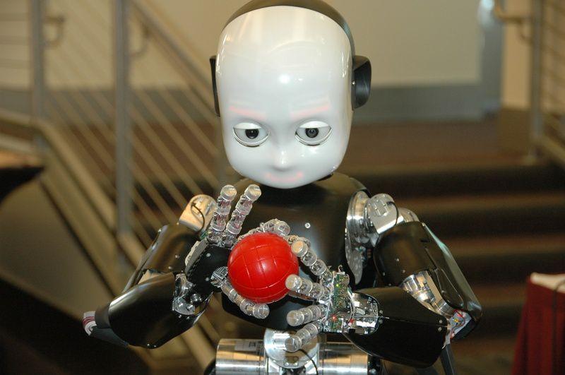 iCub, un robot doté d'un cerveau artificiel simplifié.