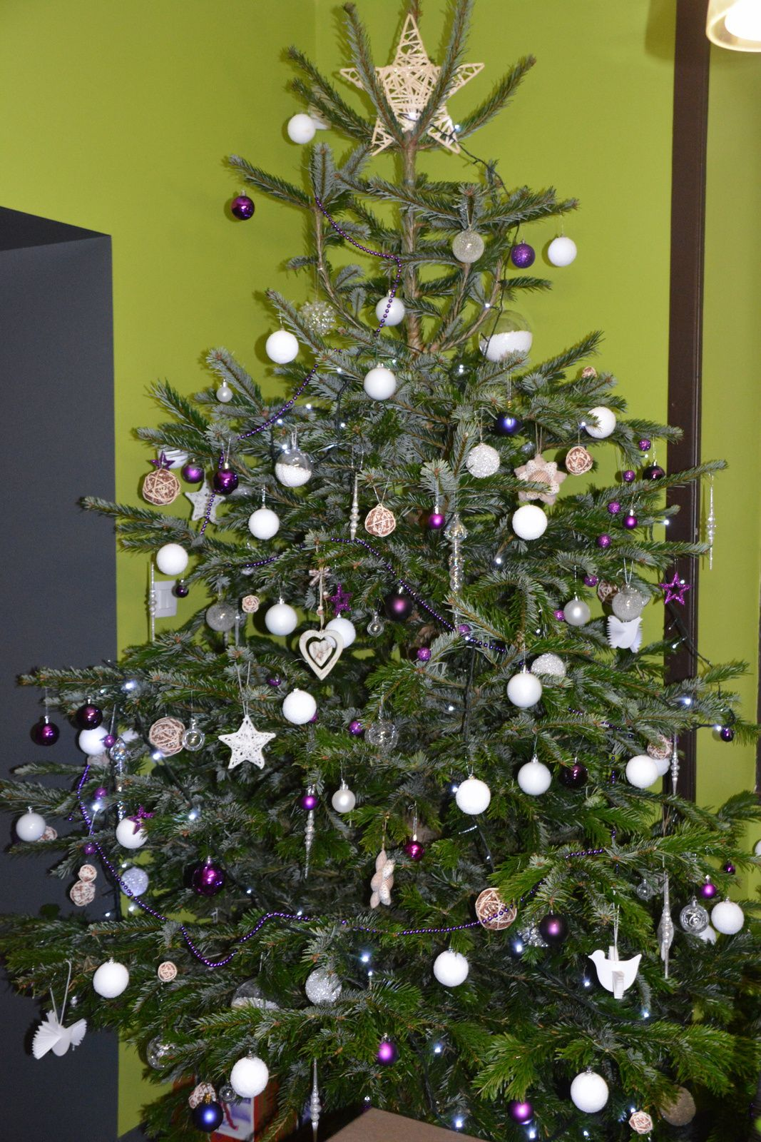 J 6 : notre sapin