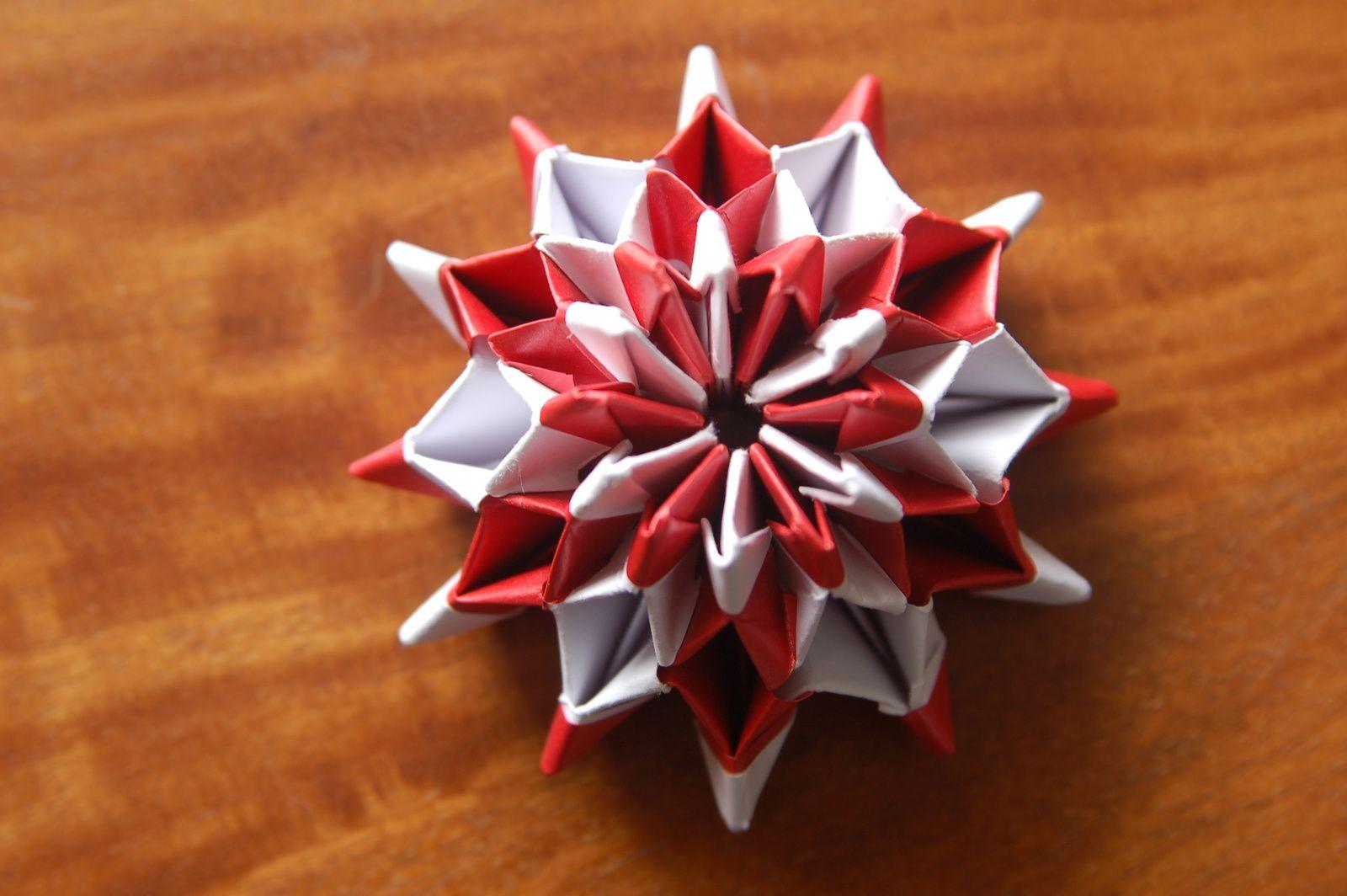 J 15 : Rose de Noël