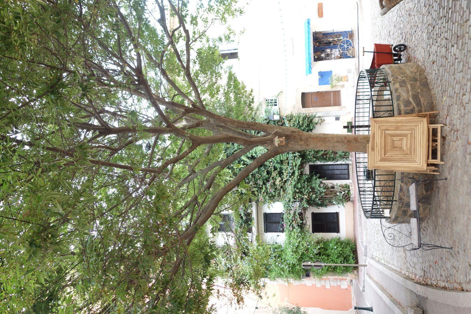 Des petites places avec au milieu un arbre ou une fontaine.