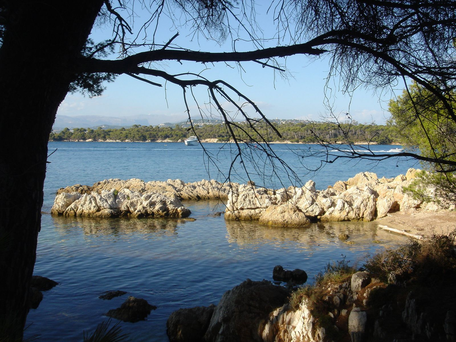 Sur l'Ile Saint-Honorat, en face l'Ile Sainte-Marguerite.
