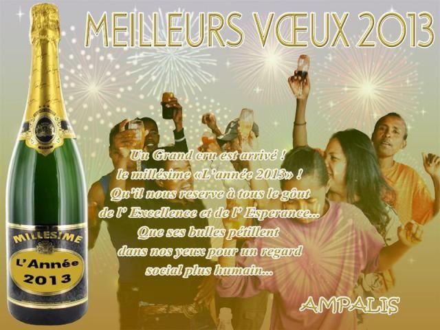 0990 - Voeux 2013 d'AMPALIS