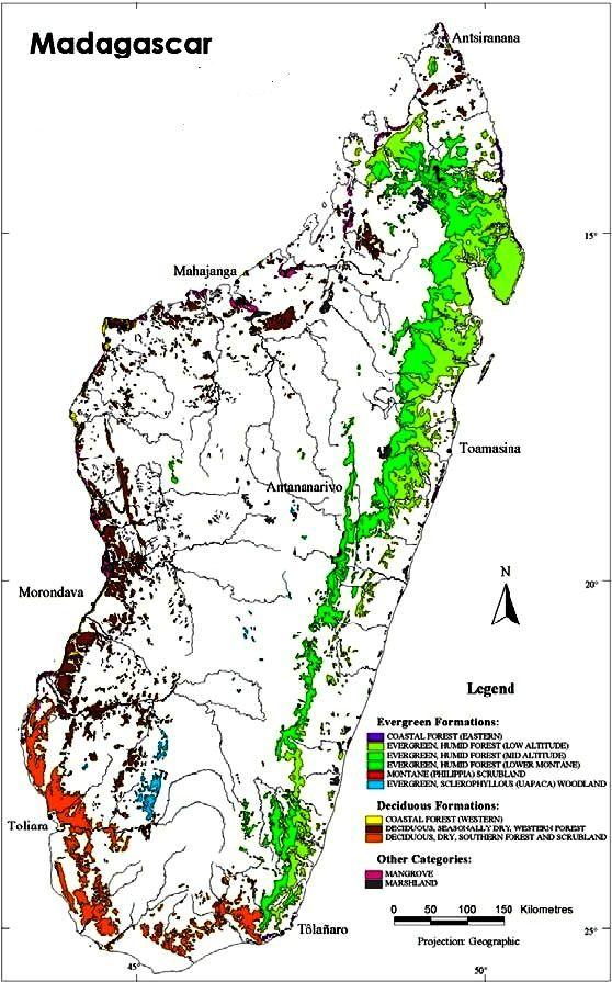 En vert, ce qu'il reste des forêts primaires originelles