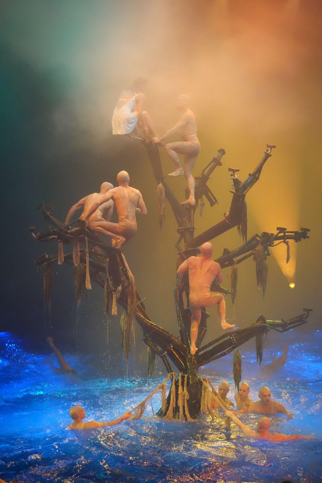 Las Vegas shows (Absinthe, Rêve, Mystère)