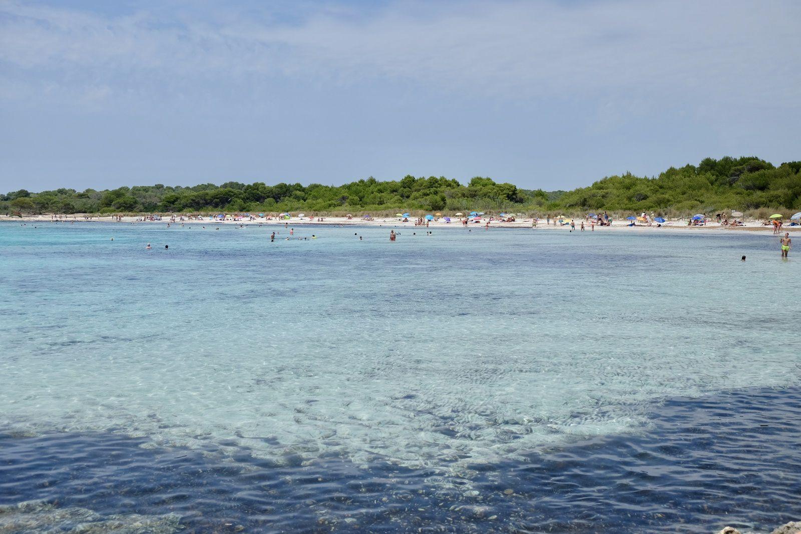 Une succession de plages magnifiques, toutes sauvages et préservées, qu'il faut mériter en marchant souvent longtemps sous les pins et les encouragements des cigales....