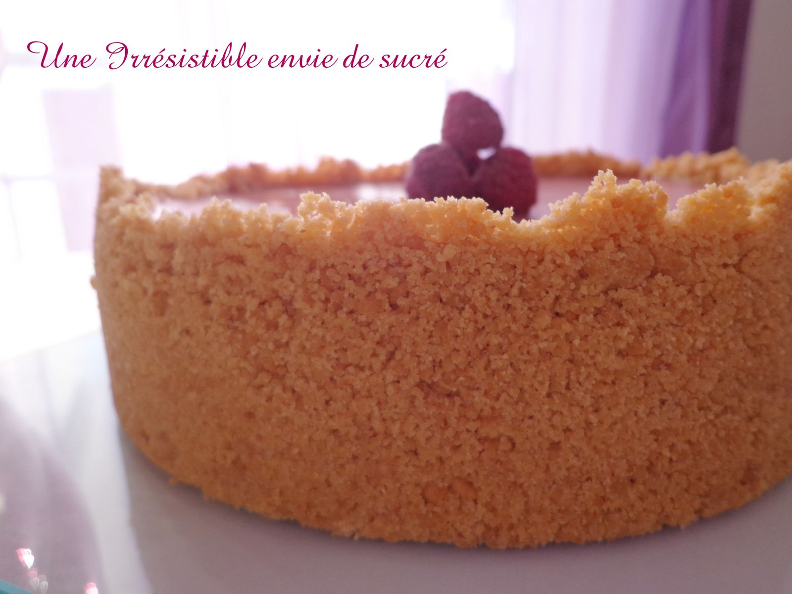 Cheescake aux fruits rouges