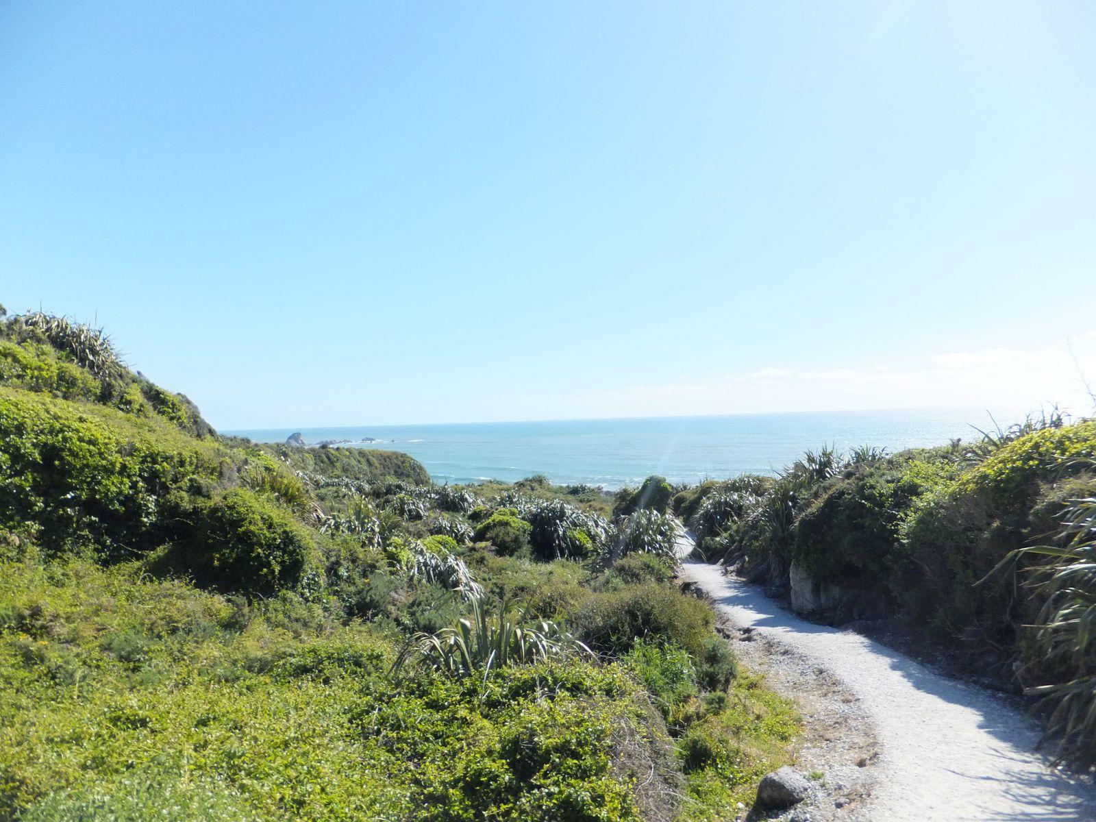 Road Trip avec Pierre : Nelson Lakes et Cape Foulwind