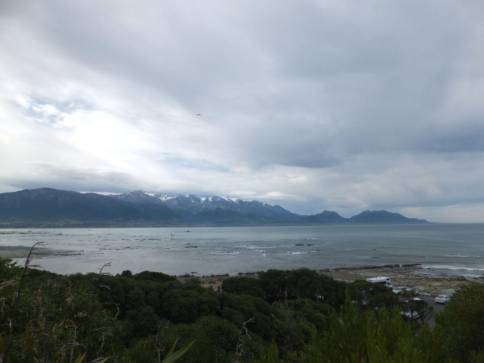 Road Trip with Pierre : Kaikoura, entre mer et montagne