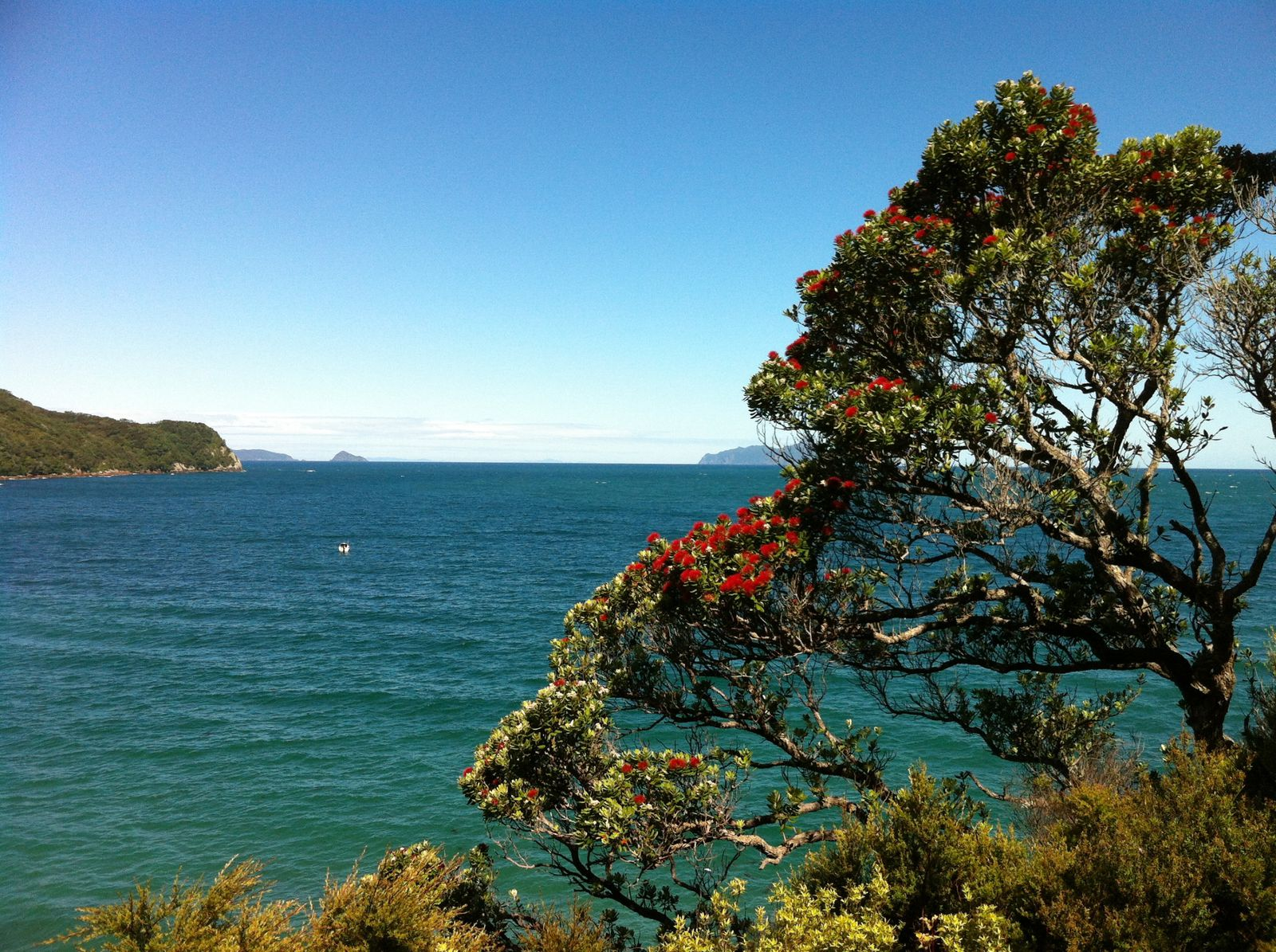 Whangarei Heads : Woolshed Bay, Busby Head and Smugglers Cove